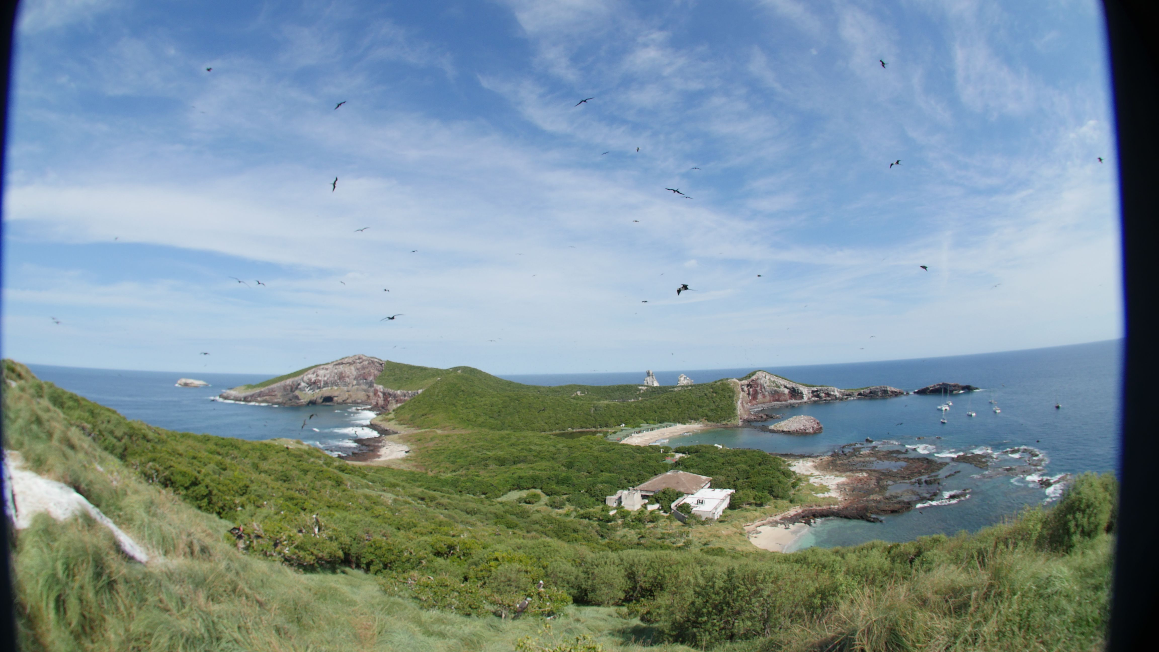 Isla Isabel vía Kit de Medios.